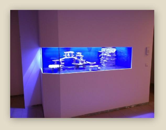 Strutture in ceramica per acquario di barriera rivista for Acquario da parete
