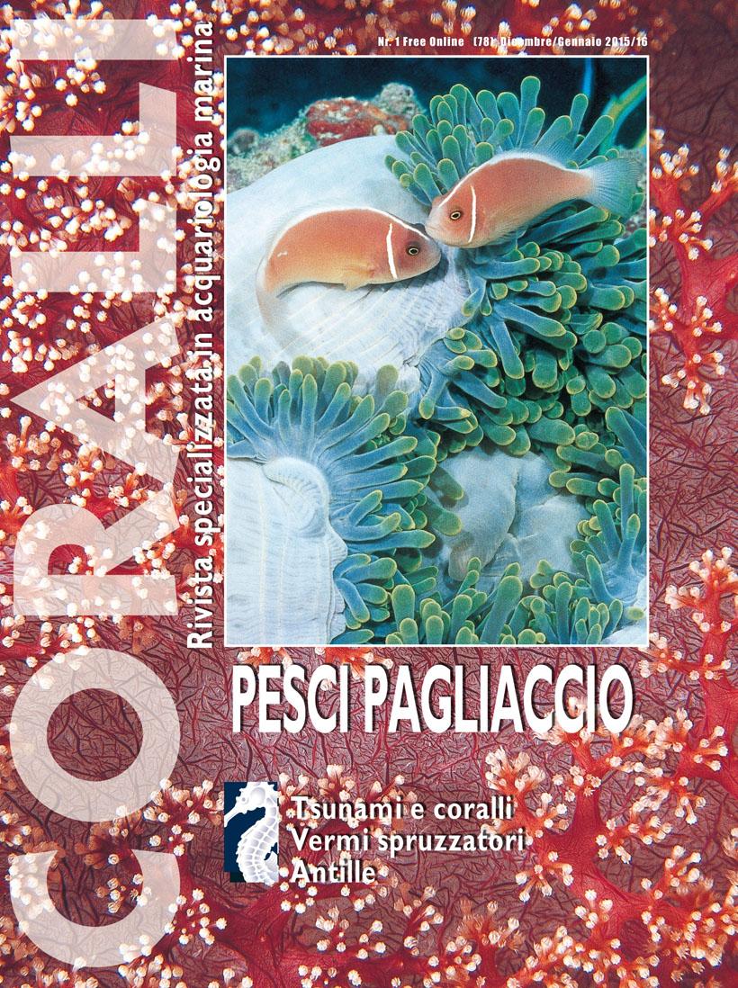 Coralli nr 1 free online pesci pagliaccio rivista for Pesci online
